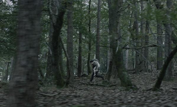 Amama (When a Tree Falls)
